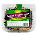 Germeni de Ridichi Negre pentru Salata,sendvisuri si Garnituri