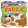 Paula Budinca de Lapte cu 30% Budinca cu Gust de Ciocolata si Alune