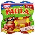Paula Budinca cu Gust de Ciocolata si 30% Vanilie